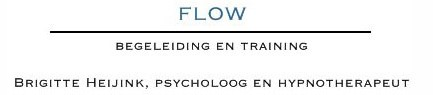 Heijink Psycholoog